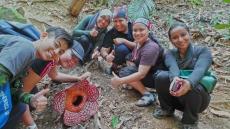 rafflesia2